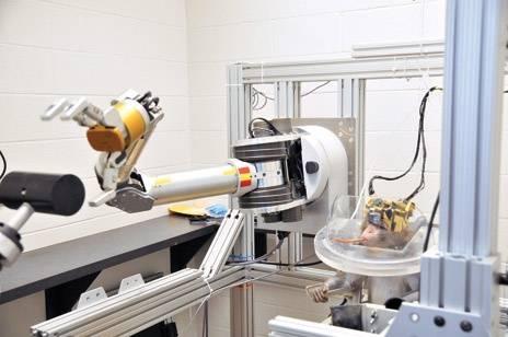 Robotas-manipuliatorius. Šalia jo, dešinėje tupi robotą valdanti beždžionė