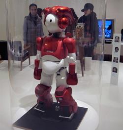 Sukūrė robotą su riedučiais