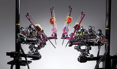 """Robotai pagalbininkai: """"RAVEN 2"""""""