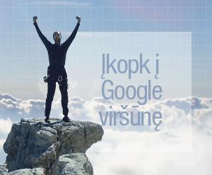 """SEO Challenge 2013"": įkopk į ""Google"" viršūnę"