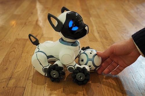 TOP 5 namų robotai, kuriuos jau galite įsigyti
