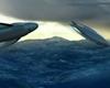 Ateities povandeniniai laivai primins jūros gyvūnus