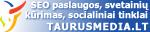 SEO Paslaugos su Garantija | Taurusmedia.lt