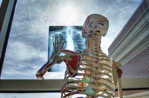 Europos radiologijos diena: ką apie ją žinome?