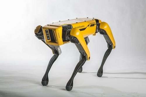 """Neįtikėtini """"Boston Dynamics"""" robotai"""