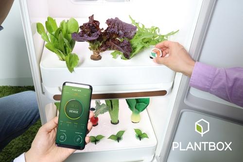 """""""Samsung"""" naujienos: visus metus šviežios daržovės, išmanioji kolonėlė ir dirbtiniu intelektu pagrįsta platforma"""