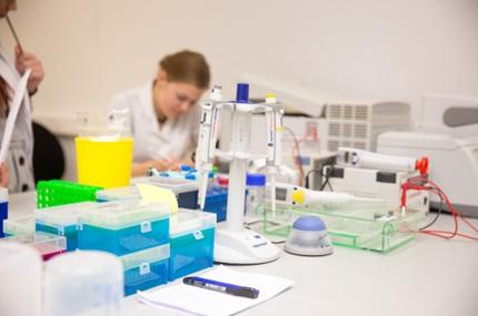 Užsienio ekspertai vertins Lietuvos mokslo veiklą