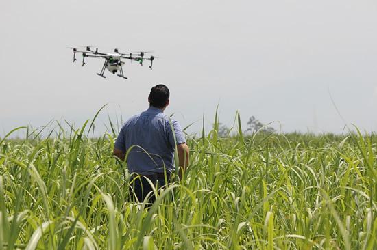 Nuo šiol ekologinius laukus padės stebėti dronai