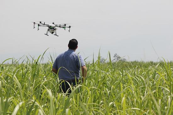 IT žemės ūkyje: nuo klaidų eliminavimo iki palydovinių prognozių ūkininkams
