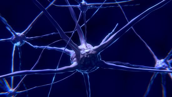 Neuromokslininkė Neniškytė: matau technologijas, bet neuro prasme Muskas proveržio nepadarė