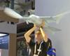 Bioninis kiras skraidė virš Kinijoje surengtos robotų parodos lankytojų