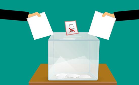 Vyriausybė sulaužė pažadą rinkėjams ir palaidojo internetinio balsavimo idėją