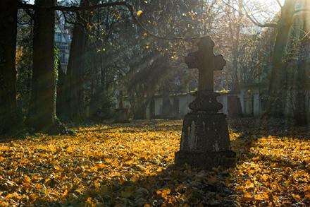 Virtualios kapinės – šiukšlių gausos sprendimo būdas