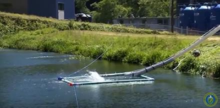 """Lašišų """"patranka"""" JAV upėse žuvims padeda įveikti užtvankas"""