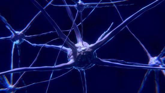 Bioninius neuronus kuriantys mokslininkai tiki, kad jie padės paralyžiuotiems žmonėms vėl judėti