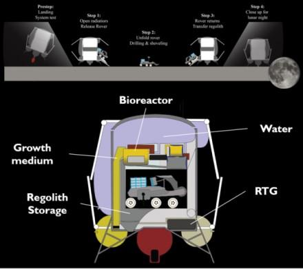 Siūlomas bioreaktorius Marso kolonijų statyboms: galėtų duoti pradžią visai pirmųjų kolonistų gyvenvietei