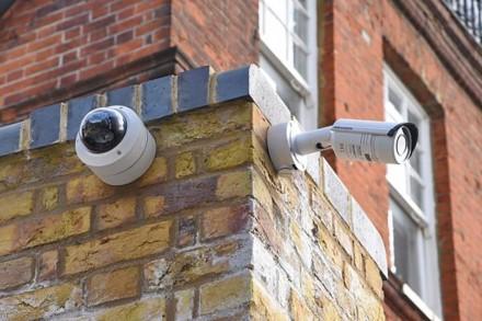 Specialistai pataria: kaip apsaugoti namus nuo ilgapirščių atakų
