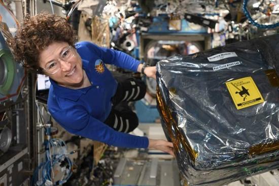 Astronautė Christina Koch TKS instaliuoja Šaltų atomų laboratoriją © NASA/JSC