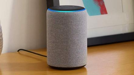 """Pirmojo pasaulio problemos: 11 mėnesių vaikas atsiliepia tik šaukiamas """"Amazon"""" balso asistento vardu"""