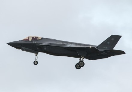 F-35 yra vieni pažangiausių ir brangiausių naikintuvų © Steve Lynes (CC BY 2.0) | commons.wikimedia.org