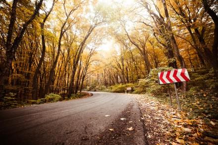 """Rudens kelias. """"Picjumbo"""" nuotr."""