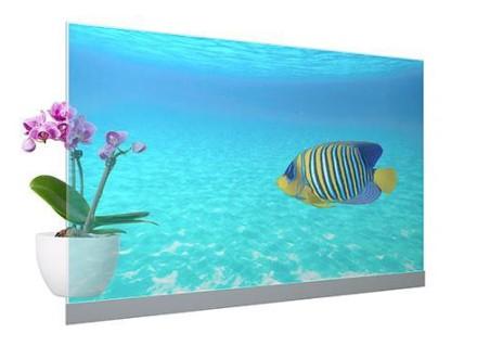 """""""Panasonic"""" išleidžia 55 colių skaidrius OLED ekranus namams, parduotuvėms ir biurams"""