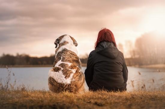 Naujas startuolis verčia šunų kalbą į žmonių