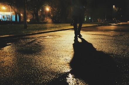 Kad pasivaikščiojimas šalikele nesibaigtų tragedija: 4 būdai įspėti vairuotojus