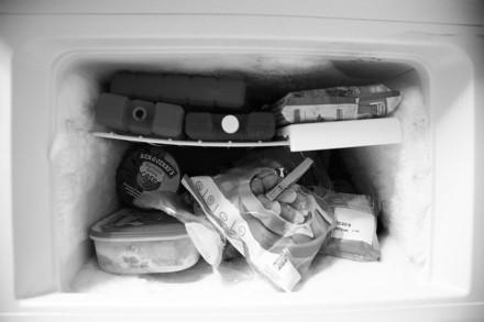 Šaldikliai ir šaldymo dėžės: ką reikėtų žinoti apie maisto šaldymą