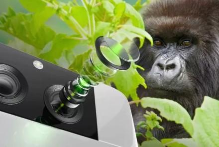 Telefonai tuoj fotografuos geriau: padėkokite gorilos stiklui