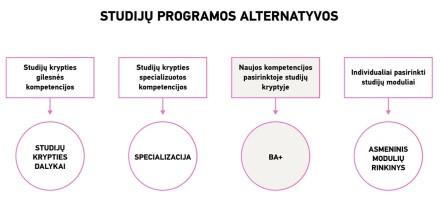 Studijų programos alternatyvos